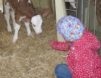 Bauernhoftiere Urlaub Bauernhof