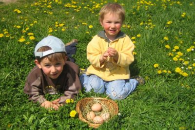 kinderbauernhof-bayerischer-wald-fruehlingswiese-osterurlaub