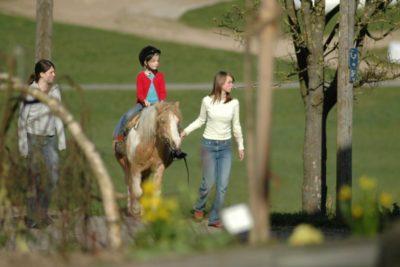 reiturlaub-bayerischer-wald-kinder-ponyreiten