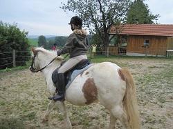 Bauernhof Urlaub Erlebnis Pony reiten Ferien im Bayerischen Wald