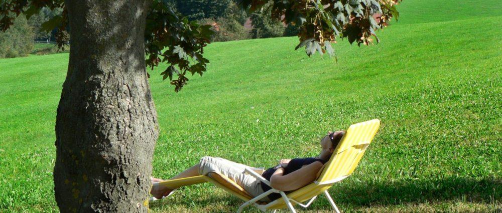 gschwandnerhof-erholungsurlaub-familien-kinder-bauernhofferien-relaxen