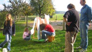 erlebnisbauernhof-wettmelken-bayerischer-wald-familienurlaub