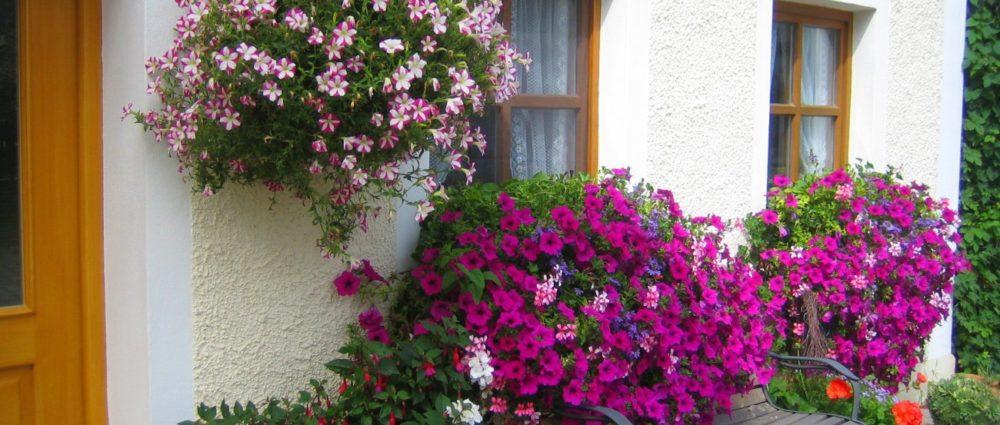 ferienhaus-online buchen-bayern-bauernhofurlaub-blumen-ferienhaus