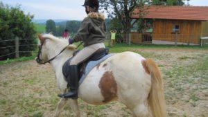 reiturlaub-bayerischer-wald-bauernhof-ponyreiten